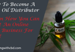 How To Become A CBD Oil Distributor - Absolutely Free Home Based Business