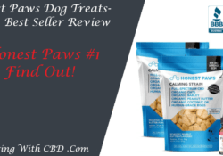 Honest Paws Dog Treats Review - Social Image