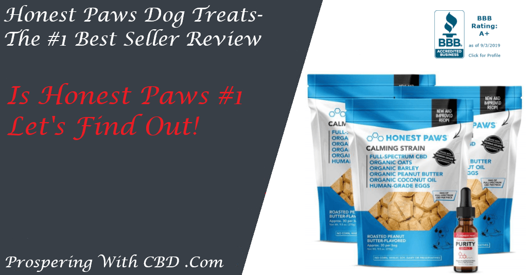 Honest Paws Dog Treats Review - Social Image