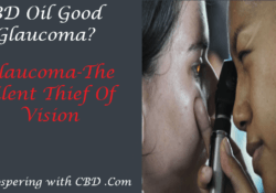 Is CBD Oil Good For Glaucoma - Featured Image