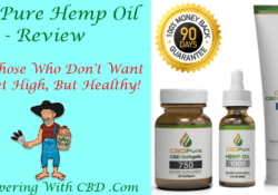 CBDPure Hemp Oil 1000 - CBDPure Review -Featured Image