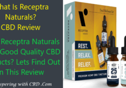 What Is Receptra Naturals - CBD Review